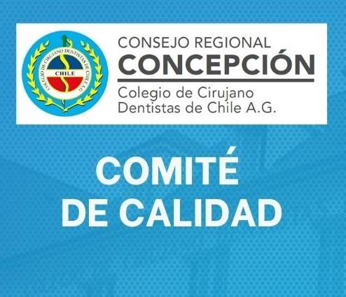COMITÉ DE CALIDAD REGIONAL CONCEPCIÓN